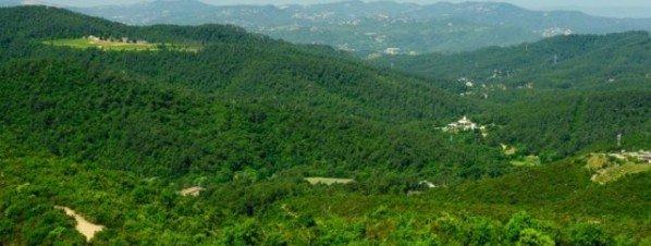 El-Parc-Natural-de-Collserola-_54394394834_51351706917_600_226